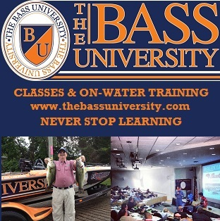 The Bass University- Never Stop Learning
