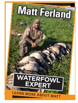 Matt_Ferland